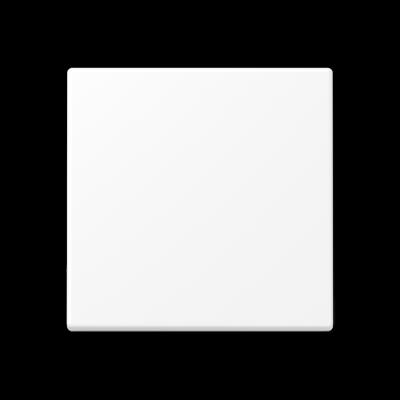 Центральна плата стандарт Білий матовий