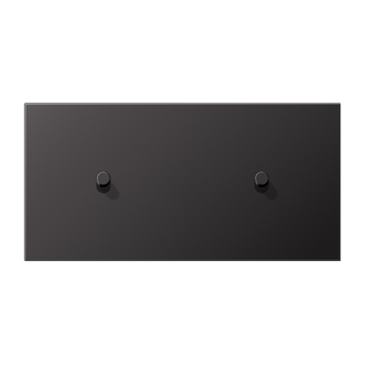 Накладка 2-постова для вимикача з 2-ма тумблерами «циліндр», горизонтальна ME12-200CR25